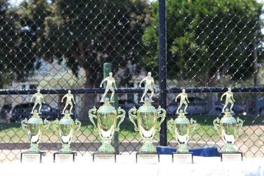 Giải Bóng Đá Tình Bằng Hữu TNSV California Lần II 2013