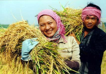 Nguồn tài liệu nghiên cứu về nông nghiệp Việt Nam bằng tiếng Anh
