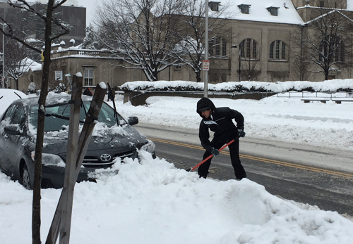 Nhiều người phải đào tuyết để lấy xe đi làm