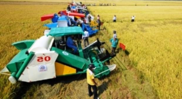Giáo sư – Tiến sĩ Võ Tòng Xuân: Đầu tư vào nông nghiệp, đất nước giàu nhanh hơn