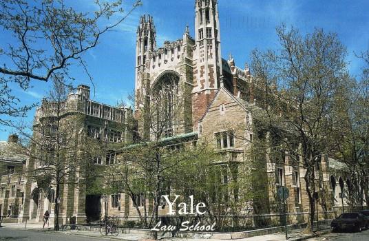 Triệu Chứng Yale
