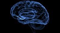 Chỉ số thông minh, hay IQ (Intelligence Quotient) thường được cho là có liên quan đến sự thành công trong học tập, trong công việc, trong Xã hội. Những nghiên...