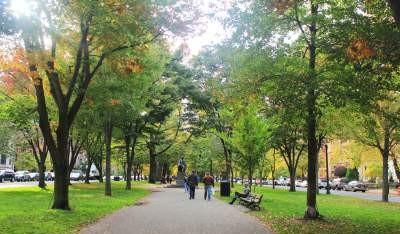Mùa thu đã đến -  trên con đường từ Boston Public Garden đến Newbury Street