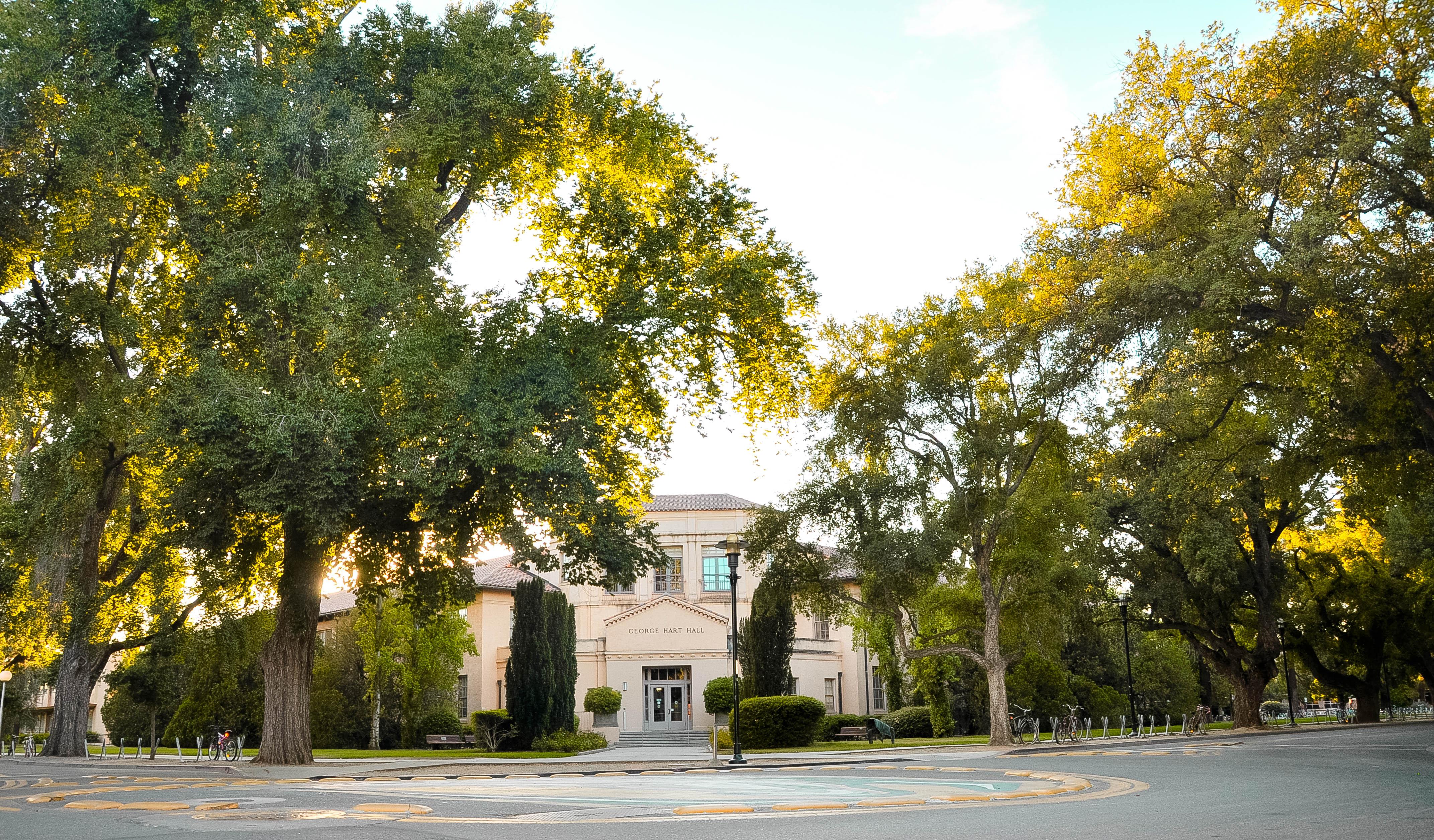 Không gian nhiều cây xanh và những con đường rộng thênh thang trong campus ưu tiên dành cho xe đạp