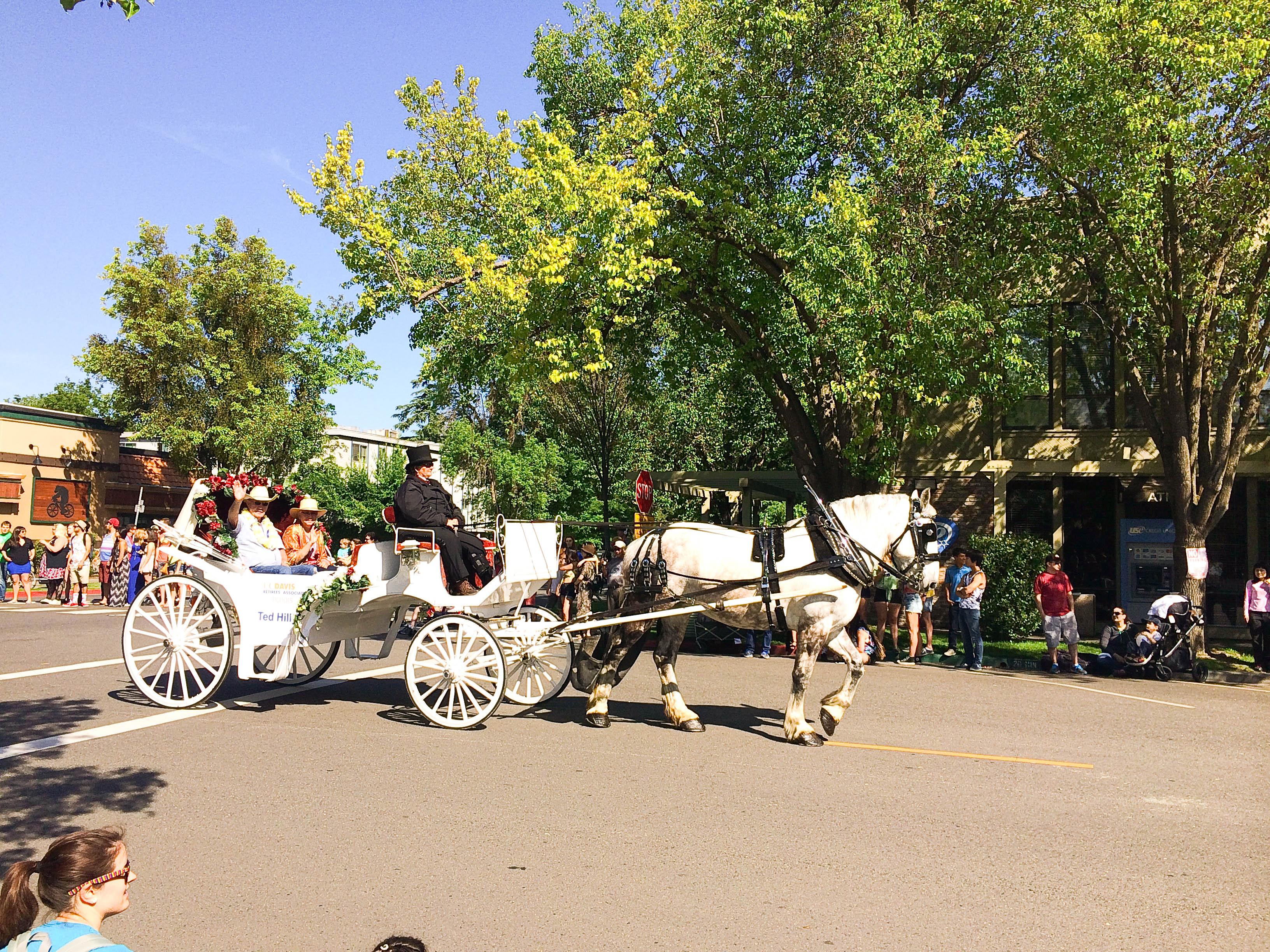 Diễu hành nhân ngày truyền thống của trường Picnic Day