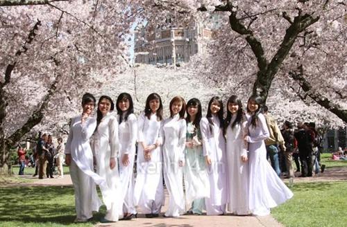 Chương trình học bổng JDS của chính phủ Nhật năm 2015