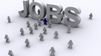 Hiện VEF đang cần vị trí Giám đốc tài chính và kế toán làm việc tại Hoa Kỳ.