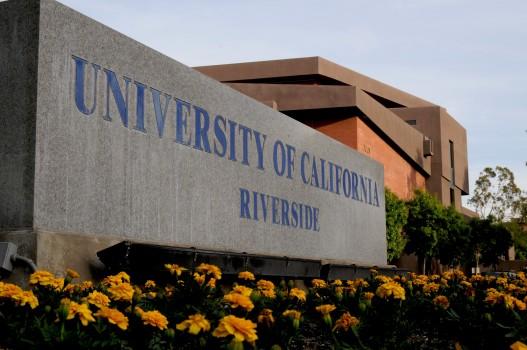 University of California, Riverside và Chương trình Giáo dục Quốc tế