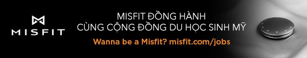 banner misfit