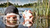 Nhờ kiên trì ngụp lặn suốt 14 năm trong các hồ nước gần nhà, một người đàn ông ở Florida (Mỹ) đã khiến nhiều người ngỡ ngàng khi trở thành...