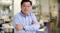 Giáo sư Nguyễn Văn Tuấn là một nhà nghiên cứu loãng xương nổi tiếng trên thế giới với hơn 250 công trình nghiên cứu khoa học được đăng tải trên...