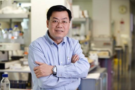 """GS.TS. Nguyễn Văn Tuấn: """"Con đường khoa học có nhiều điều thú vị."""""""