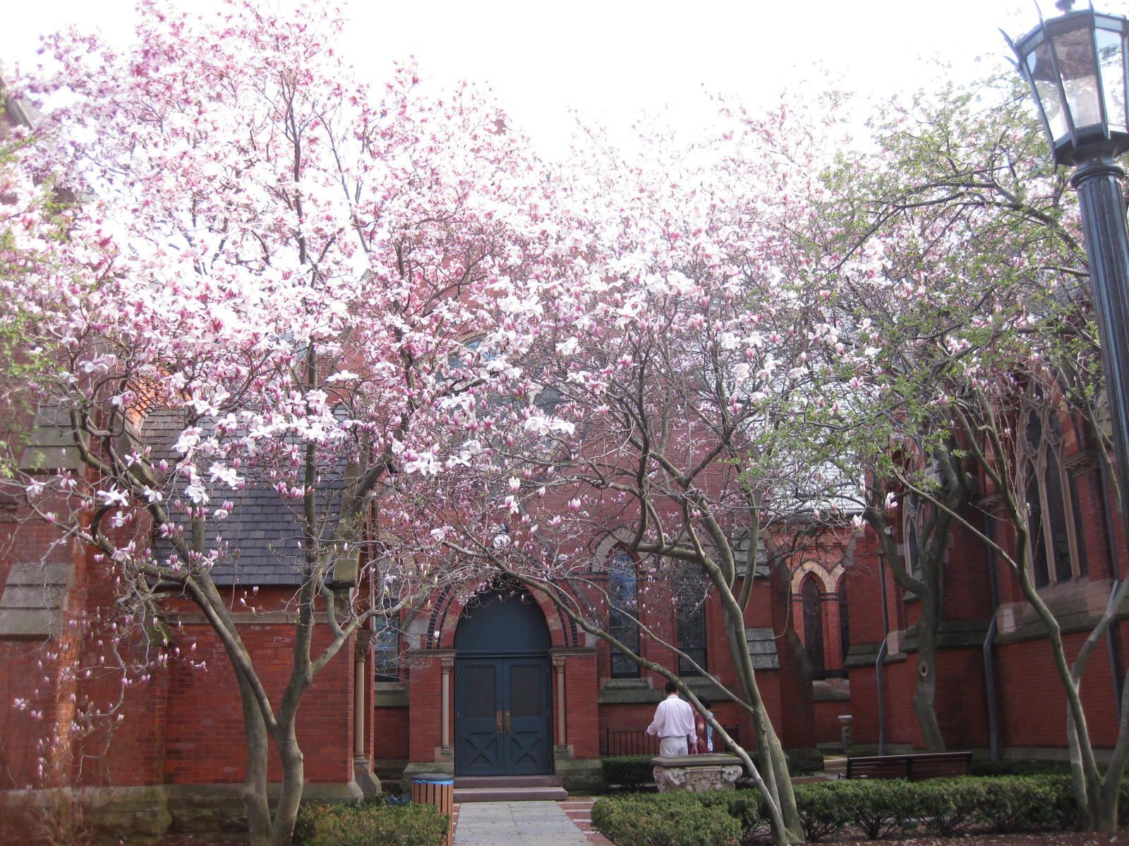 Nhà thờ trong trường Cornell.