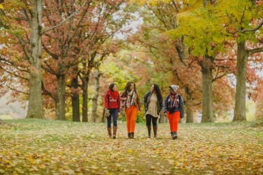 Đại học Harvard thay đổi tiêu chí tuyển sinh
