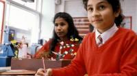 Một nghiên cứu mới đây cho thấy, can thiệp từ môi trường bên ngoài có thể tạm thời thúc đẩy trí thông minh của học sinh, theo The Huffington Post....