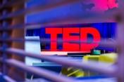 5 bài TED được yêu thích nhất mọi thời đại