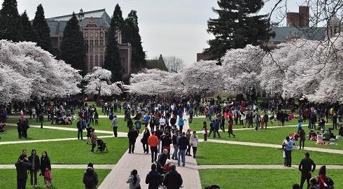 6 Hoạt Động Truyền Thống Kì Lạ Tại Các Trường Đại Học Mỹ