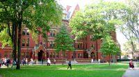 Harvard là một trong những trường hàng đầu thế giới, đây là cơ hội để bạn tham gia vào chương trình giảng dạy kinh doanh uy tín tại Mỹ. Học...