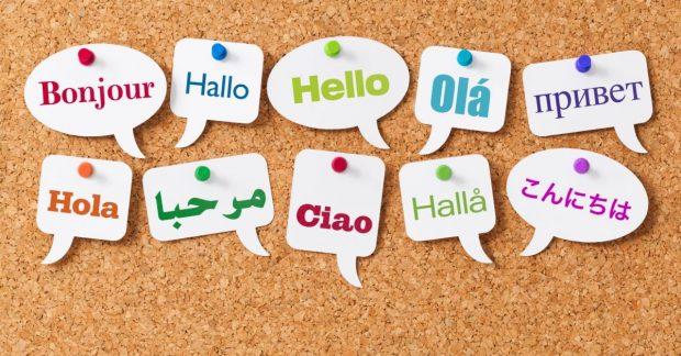 10 trường đại học tốt nhất ở Mỹ dành cho chuyên ngành Ngôn ngữ Anh