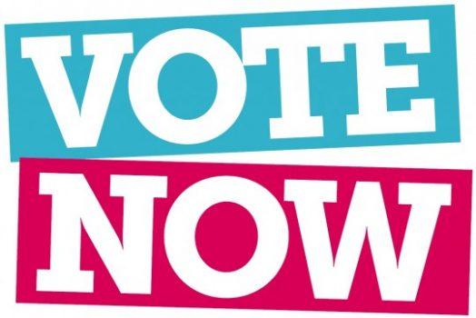 Bỏ phiếu bầu Ban điều hành Hội TNSV VN tại Hoa Kỳ, nhiệm kỳ 2017-2019