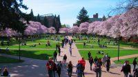 Nếu bạn đang tìm kiếm một trường đại học ở bang California thì bạn sẽ có rất nhiều các lựa chọn, cả tư thục và công lập, từ các trường...