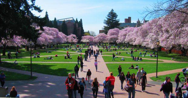 10 trường đại học hàng đầu California