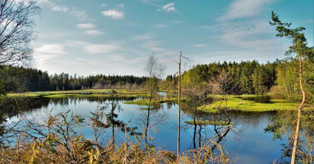 10 trường đại học hàng đầu nước Mỹ dành cho ngành Tài nguyên thiên nhiên và bảo tồn tự nhiên.