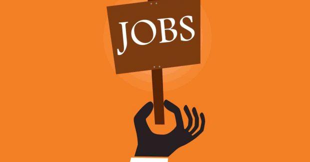 12 công việc bán thời gian tốt nhất tại Mỹ
