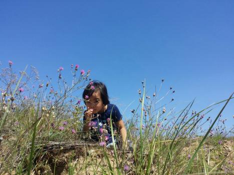BV – 14: Bài dự thi HTNM 6 – Hạnh phúc! (Vương Khôi Nguyên)